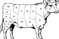 cow-31720_1280